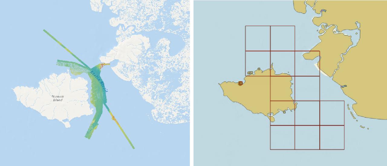 Etolin Strait survey area and reschemed grid